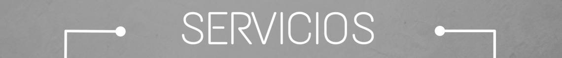 titulo_gris_servicios1